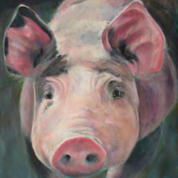 Some Pig! by Barbara Chase