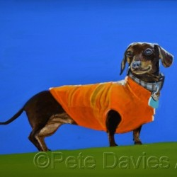 Cocoa in her Racing Colours by Pete Davies Art