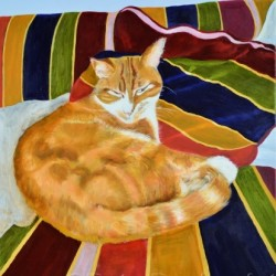 Buddy - the Comfy Cat by Pete Davies Art