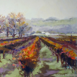 Winter Vineyard II by Silvia Rutledge