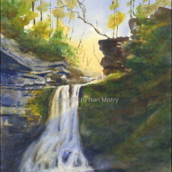 Cowshed Falls, Fillmore Glen by Nari Mistry
