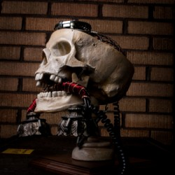 Skull Phone by Gears On Acid