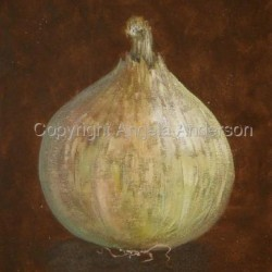 Onion by Angela Anderson
