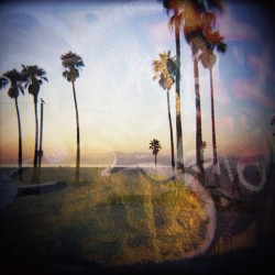 Venice Beach and Graffiti II by Maura Brennan