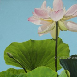 Lotus Number Ten by Frank Depietro