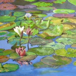 Water Lilies 2 by Ron Hurst, Artist - Painter