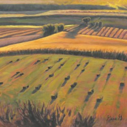 Fields Aglow by Gina Grundemann, Colorado Painter