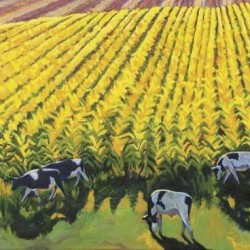 Grazing in Fields of Gold by Gina Grundemann, Colorado Painter