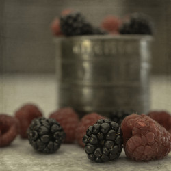 Bountiful Berries 2 by Teresa Wilson