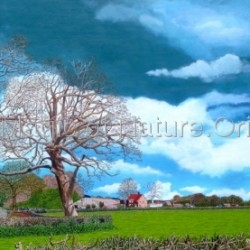 Bushbury Farm, Brockham - £1250 by  Discover The Magic Of Nature. Original Hyperrealistic Paintings In Acrylics