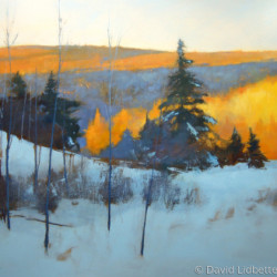 Madawaska Hills - late afternoon by David Lidbetter Fine Art