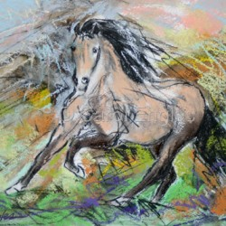 Buckskin Horse at a Gallop by Carol Engles Art
