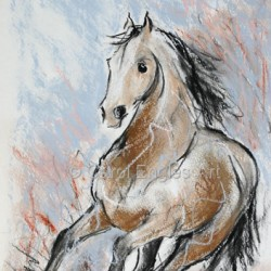 Quarter Horse at a Gallop by Carol Engles Art