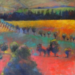 French Landscape, Aude 1 by Carol Tippit Woolworth