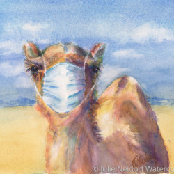Stay Home by Julie Neidorf Watercolors