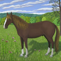 HORSE, MILKWEED & MONARCHS by Jane Troup