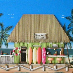 The Board Room Surf Shop by Floribeanart
