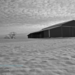 Snow Barn B&W by Images By Charles Dunne