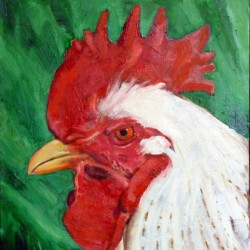 Rooster by Amanda Mccutcheon