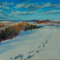 Footsteps in the Snow by Janice Wright