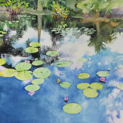 Tropical Pond, Pink Water Lilies by Brian Mccormick