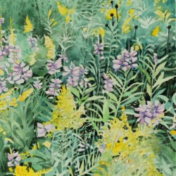 Obedient Plant and Goldenrod by Brian Mccormick