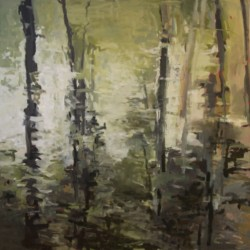Withlacoochee River by Leslie Stokes