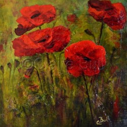 Poppies Petite by Claire Bull