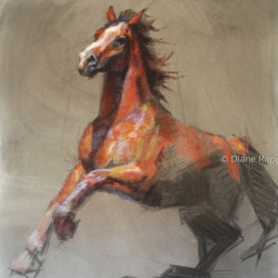 Study of a Horse by Diane Rappisi Fine Art