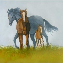 Family of Wild Horses by Virginia Cantarella