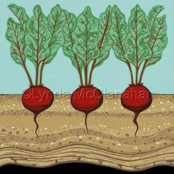 Three Beets With Dirt by Lynda Mcclanahan
