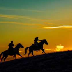 Cowboys Chasing the Sun by Timothy Needham - Photographer