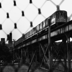 The L From Bloomingdale Trail by Robert Goodman Photography