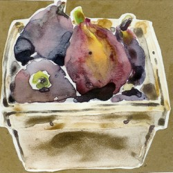Figs by Gail Bracegirdle