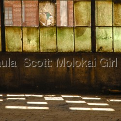 Windows 2010 by Paula  Scott: Molokai Girl Studio