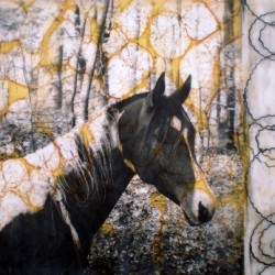 Cocoa by Mary Calkins Art