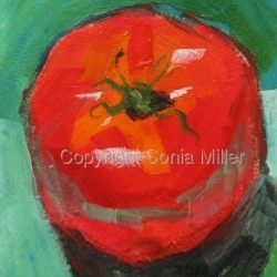 One Tomato by Sonia Miller