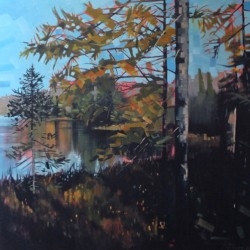 Tamarack Bog View by Reid Thorpe Fine Art And Illustration