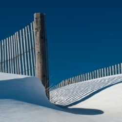 Snow Dune by Annette Conniff
