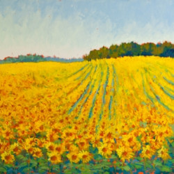 A Crowd of Yellow by Annette Conniff