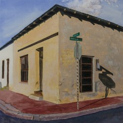 The Old Town, Tucson by Richard Levine