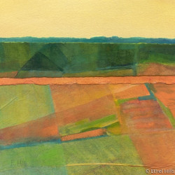 Fields of Summer by Ethel Hills