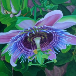 Passion Flower by Lisa Ernst
