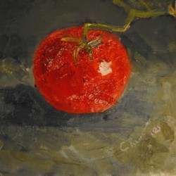 Tomato by Cindy Ruenes Fine Art