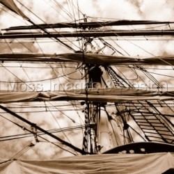 Tall Ship by Will Moss Images & Design
