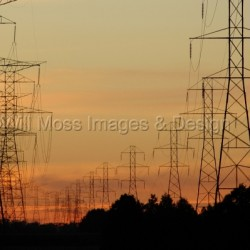Power Lines at Dusk by Will Moss Images & Design