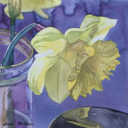 Morning Daffodil by Brad Mclean Art