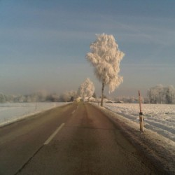 Winter Road by Amy Oestlund