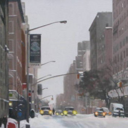 After the Snow: NYC by Alison Chambers Rbsa